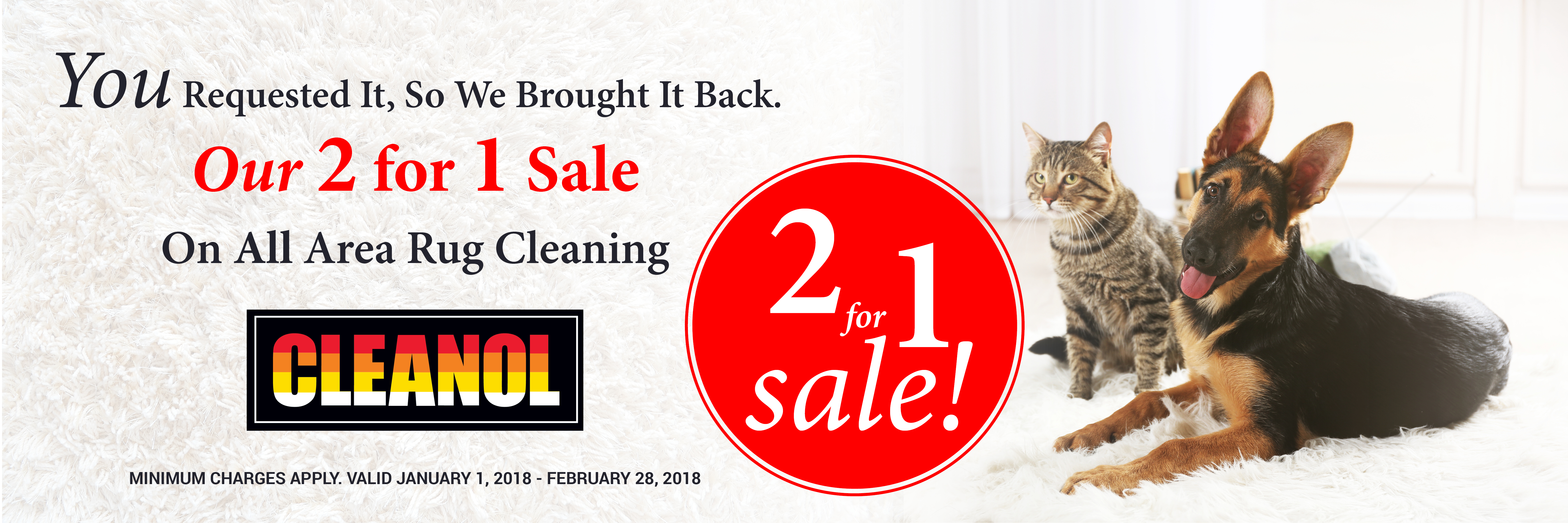 Toronto Area Rug Cleaning Promotion