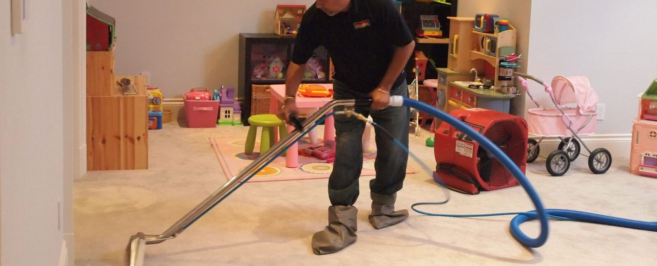 Toronto Carpet Cleaner Floor Matttroy