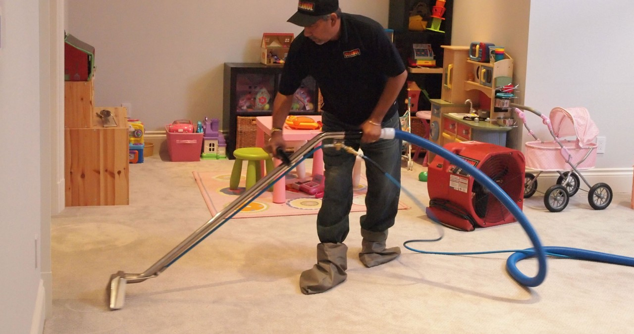 The JOY of clean carpets!